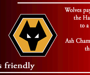 24-07-19 – Friendly – Harriers 5 Wolves 0
